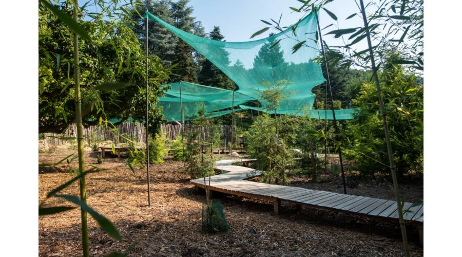 Folly Arboretum & Winery