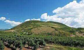 Explore the wine region – Eger